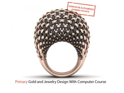 Primary gold and jewelry design with computer course