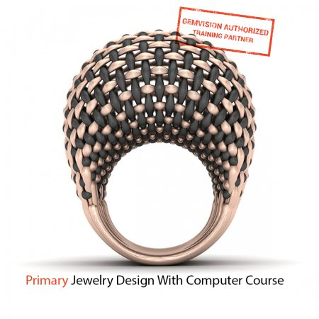 Primary jewelry design with computer course